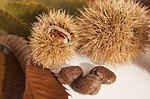 sweet-chestnuts-67062_150