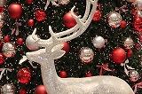 christmas-68279_640